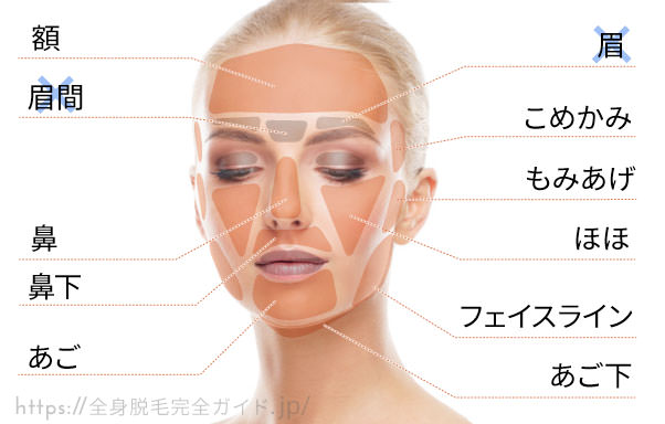 顔の照射範囲